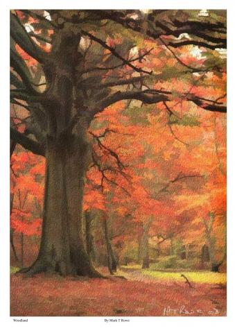 Watercolour_Painting_of_WOODLAND_%282%29.jpg